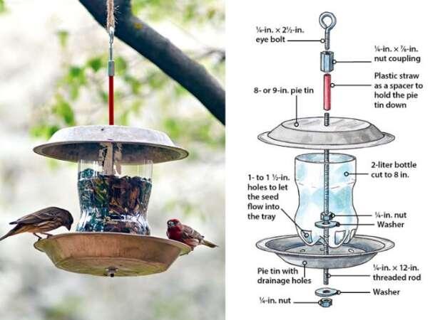 2 Liter Plastic Bottle Bird Feeder