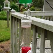 DIY Hummingbird Feeder Ant Moat Guard