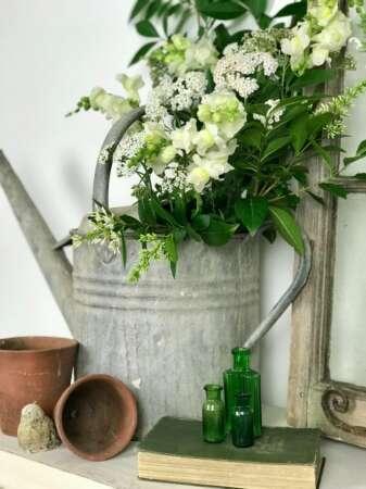 Alternative Methods For Watering Houseplants Comparison
