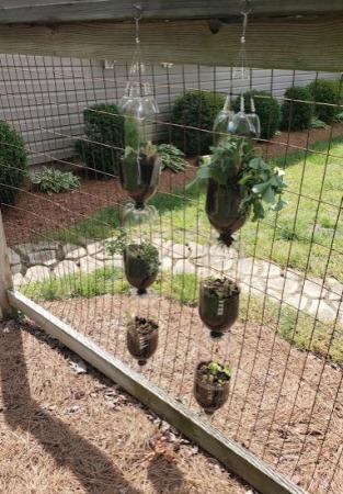 Diy Vertical Bottle Garden