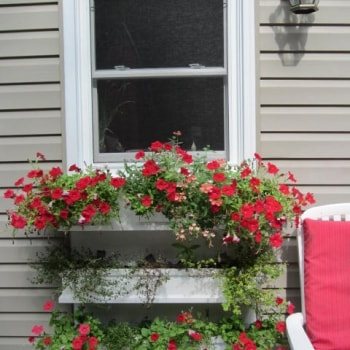 Replacing A Door With A Window