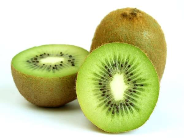 Growing Kiwi From Seed