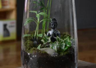 Miniature Terrarium