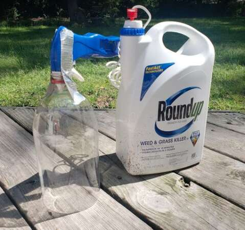 DIY Plastic Bottle Weed Killer Spray Shield