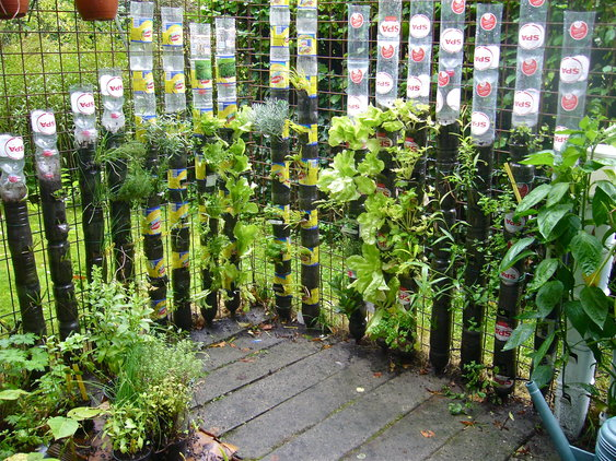 Recycle Bottle Container Garden
