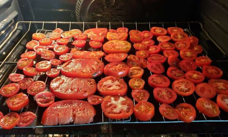 Sun Dried Oven Tomatoes Sliced Baking